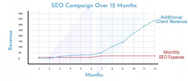 SEO campaign over 12 months showing revenue and monthly SEO expense