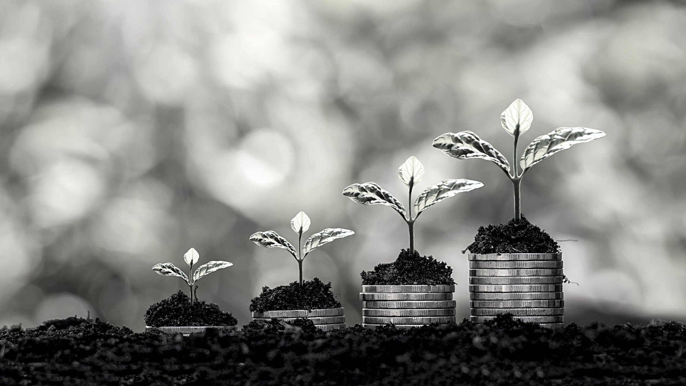 plants growing out of increasing stacks of coins
